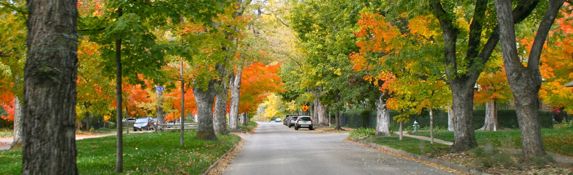 Mapleton Hill